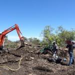 La minipelle retourne le sol et réalise les trouées de plantation