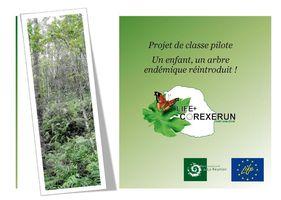 Programme_pedagogique_classes_pilotes_2012_13