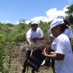 Journée de plantation avec les salariés EDF Réunion et leurs familles