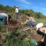 Opération de désherbage avec les bénévoles de la Srepen