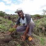 Les participants du Pandathlon ont planté leur arbre