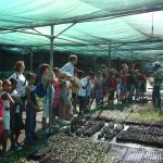 Visite de la Pépinière qui produit les 100 000 plants pour le projet LIFE+ COREXERUN