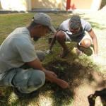 Rodolphe, médiateur au Parc national, explique aux èlèves comment planter les jeunes arbres sans abimer les racines